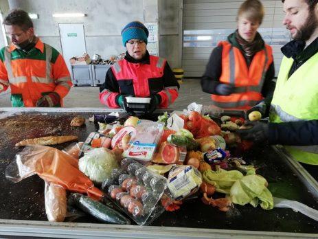 Manuelle Sortierung von Lebensmittelabfällen (c) Ingenieurbüro Wellacher e.U.